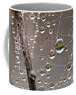 Many Worlds In One Small Space Coffee Mug