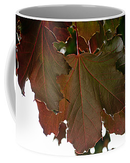 Coffee Mug featuring the photograph Maple 2 by Tikvah's Hope