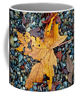Coffee Mug featuring the photograph Maple Leaf On The Rocks by Tikvah's Hope