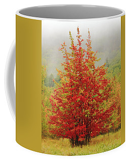 Maples In The Mist Coffee Mug