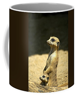 Coffee Mug featuring the photograph Meerkat Mother And Baby by Carolyn Marshall
