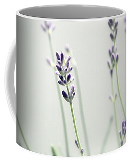 Coffee Mug featuring the photograph Memories Of Provence by Brooke T Ryan