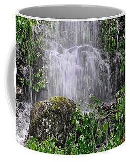 Mendenhall Glacier Flooding Waterfall Juneau Alaska 1542 Coffee Mug