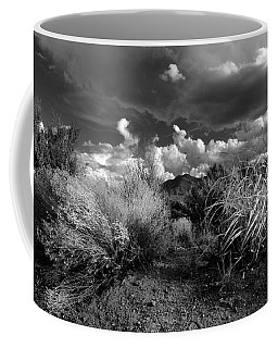 Coffee Mug featuring the photograph Mesa Dreams by Ron Cline