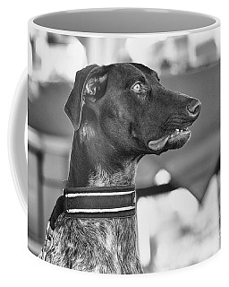 Coffee Mug featuring the photograph Mesmerized by Eunice Gibb
