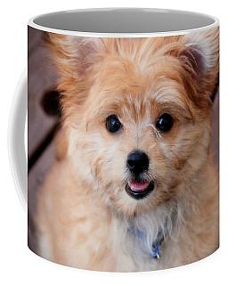 Coffee Mug featuring the photograph Mi-ki Puppy by Angie Tirado