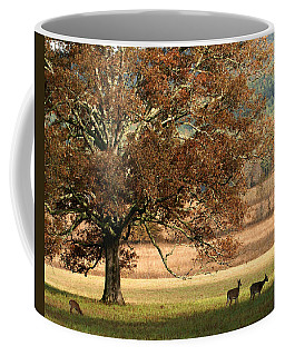 Mighty Oak Coffee Mug by TnBackroadsPhotos