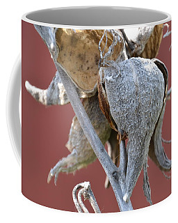 Milkweed Coffee Mug by Randy J Heath