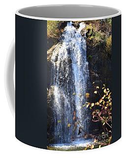 Mirabeau Falls Coffee Mug