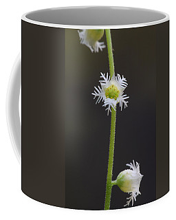 Miterwort Flowers Coffee Mug