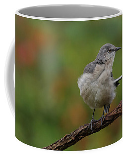 Mocking Bird Perched In The Wind Coffee Mug