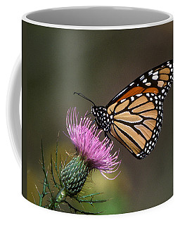 Coffee Mug featuring the photograph Monarch Butterfly On Thistle 13a by Gerry Gantt