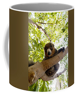 Mongoose Lemur Coffee Mug