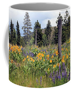 Coffee Mug featuring the photograph Montana Wildflowers by Athena Mckinzie