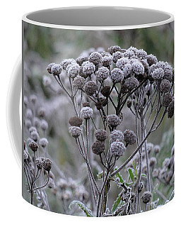 Coffee Mug featuring the photograph Morning Frost by Tiffany Erdman