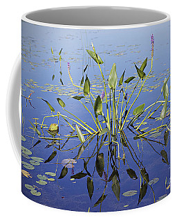 Coffee Mug featuring the photograph Morning Reflection by Eunice Gibb