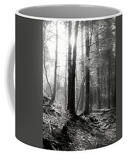 Coffee Mug featuring the photograph Morning Sun by Mary Almond