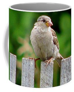 Morning Visitor Coffee Mug by Rory Sagner