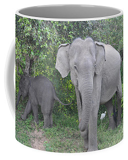Mother Elephant And Baby Coffee Mug