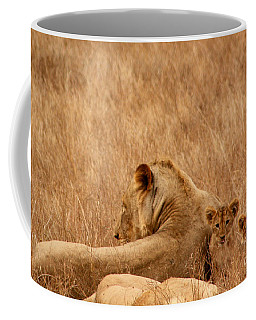 Mother Lion With Family Coffee Mug