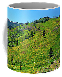 Coffee Mug featuring the photograph Mountain Meadow by Greg Norrell