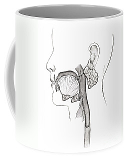 Mouth And Throat Coffee Mug