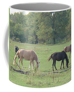 Coffee Mug featuring the photograph Mowing The Lawn by Bonfire Photography