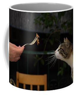 My Best Most Beloved Cat Coffee Mug