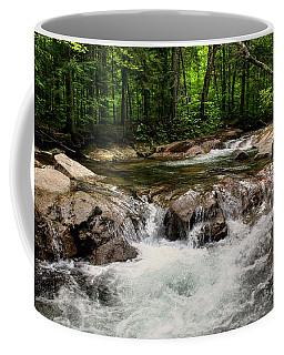 Natural Pool Coffee Mug