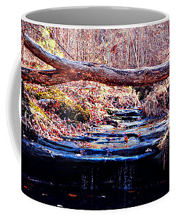 Coffee Mug featuring the photograph Natural Spring Beauty  by Peggy Franz