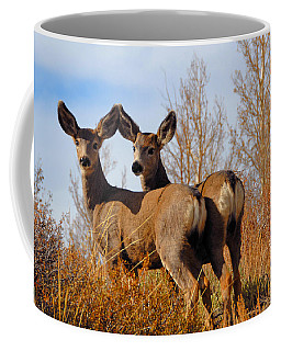 Nature's Gentle Beauties Coffee Mug by Lynn Bauer