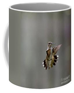 Nectar Defense Coffee Mug
