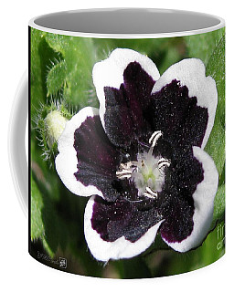 Coffee Mug featuring the photograph Nemophilia Named Penny Black by J McCombie