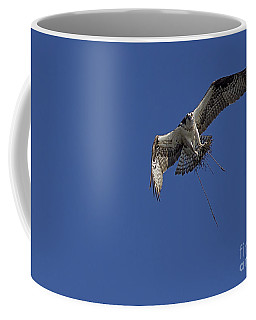Nest Builder Coffee Mug by Anne Rodkin