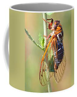 Noisy Cicada Coffee Mug
