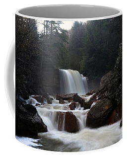 Coffee Mug featuring the photograph North Forks Waterfalls by Dan Friend