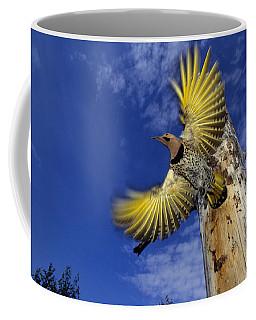 Northern Flicker Takes Flight Coffee Mug