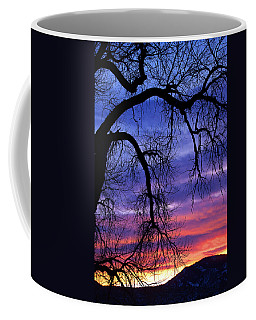 Coffee Mug featuring the photograph Obeisance by Jim Garrison