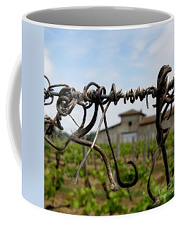 Coffee Mug featuring the photograph Old And New  by Lainie Wrightson