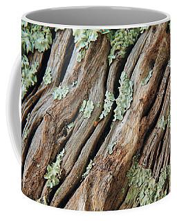 Old Wood And Lichen Coffee Mug