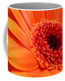 Orange Gerbera Close Up Coffee Mug