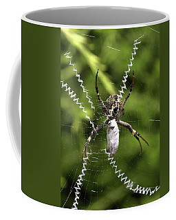 Coffee Mug featuring the photograph Orb Weaver by Joy Watson