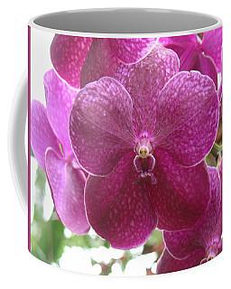 Orchid Cluster Coffee Mug