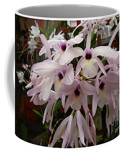 Coffee Mug featuring the photograph Orchids Beauty by Donna Brown