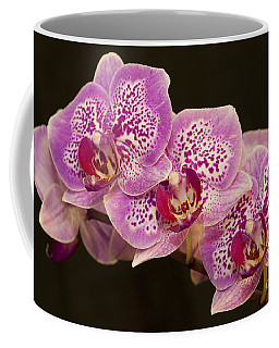 Coffee Mug featuring the photograph Orchids by Eunice Gibb