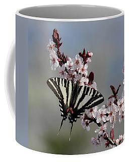 Ornamental Plum Blossoms With Zebra Swallowtail Coffee Mug
