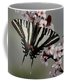 Coffee Mug featuring the photograph Ornamental Plum Blossoms With Zebra Swallowtail by Lara Ellis