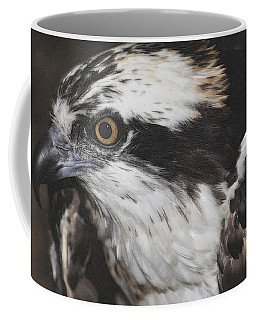 Coffee Mug featuring the photograph Osprey by Lydia Holly