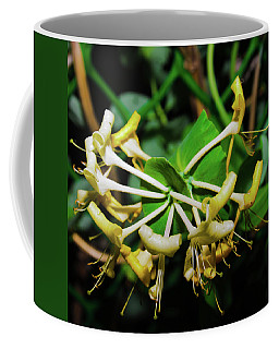 Overblown Perfoliate Coffee Mug