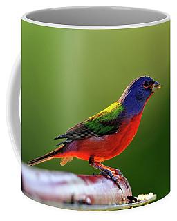 Painting Color Coffee Mug